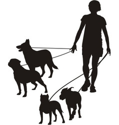 Female and four dogs vector
