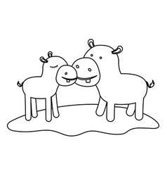 hippopotamus couple over grass in monochrome vector image