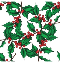 Seamless hand drawn holly pattern vector