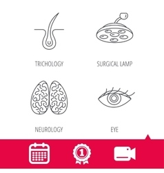 Eye neurology brain and surgical lamp icons vector