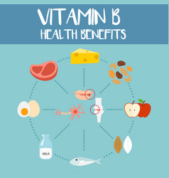 health benefits of vitamin b vector image