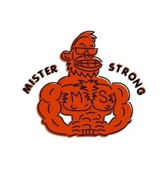 Mr super vector