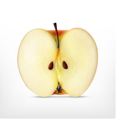 realistic apple slice vector image