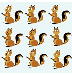 Red squirrel vector