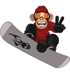 Funny monkey snowboarder vector