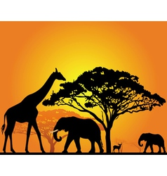 African safari silhouette vector