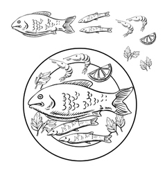 Sketch of seafood with fish and shrimps vector