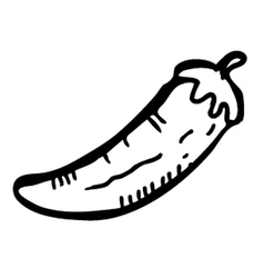 chilli doodle vector image