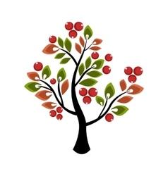 Tree growing berries and leaves vector