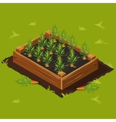 Vegetable garden box with carrots set 1 vector