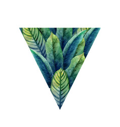 watercolor heliconia leaves vector image