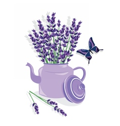 Watercolor of lavender flowers vector image