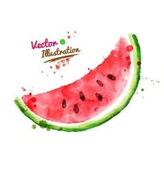 Watercolor watermelon vector