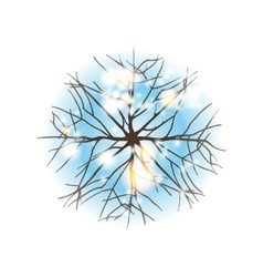 winter tree top view vector image