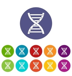 DNA set icons vector image