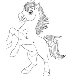 little funny foal vector image vector image