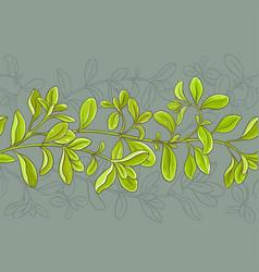 marjoram pattern vector image vector image