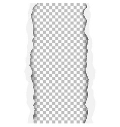 Ragged vertical hole in paper sheet vector