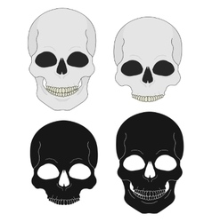 Black and white skull clip art vector image vector image