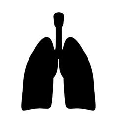 Human organs lung vector