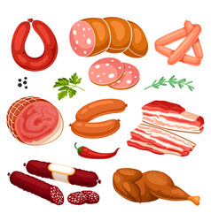 set of meat products of sausages vector image vector image