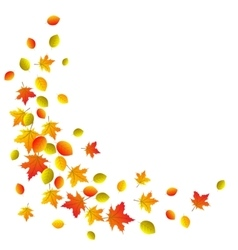 Autumn decorative border vector