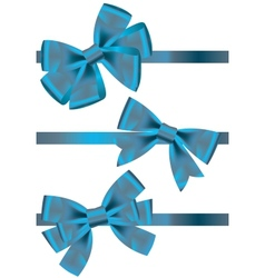 Set of different types of blue satin ribbons with vector