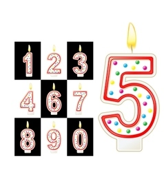 Birthday candles number Red vector image
