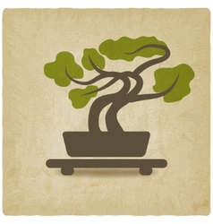 Bonsai old background vector