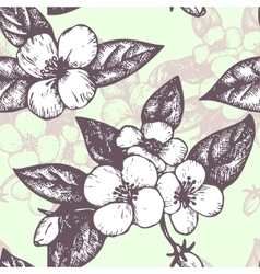 seamless pattern with jasmine flowers vector image