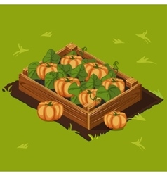 Vegetable garden box with pumpkin set 8 vector