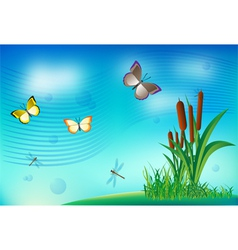 Butterfly dragonfly grass clouds summer vector