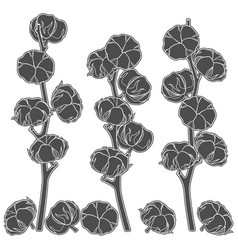 Set of with cotton branches vector