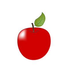Apple fruit icon vector