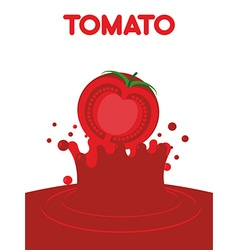 Tomato juice falls splash of tomato juice vector