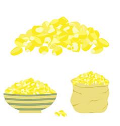 Yellow corn seed vector