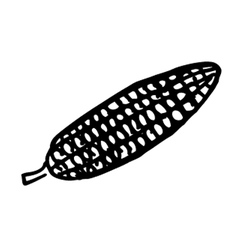 corn doodle vector image