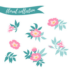floral set colorful collection with leaves and vector image vector image