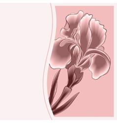 Iris Postcard vector image vector image