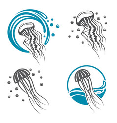 Jellyfish icon set vector