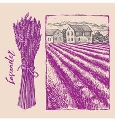 Lavender bouquet with landscape vector