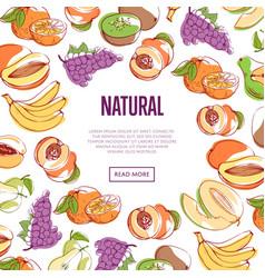 Natural tropical fruits poster vector