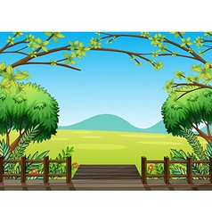 Natural view of nature vector image vector image