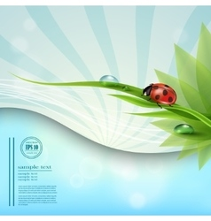 with a background of blue sky template nature vector image vector image