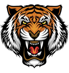 angry tiger face vector image