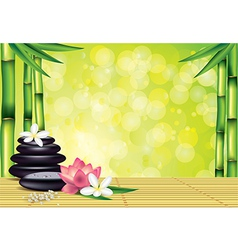 spa bamboo stones green background vector image