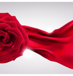 Background red rose vector