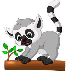 Cute lemur cartoon vector