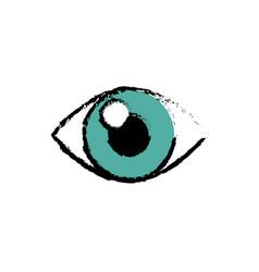 human eye icon vector image vector image