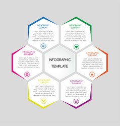 Infographic template with hexagons vector